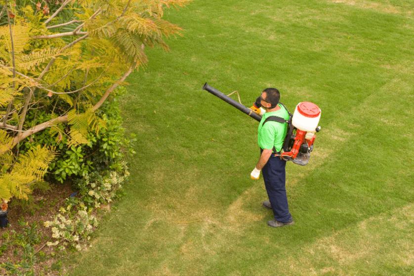 groenmedewerker